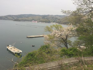 Day 2 in Onagawa (May 1st)