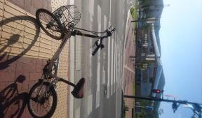 女川でサイクリング?