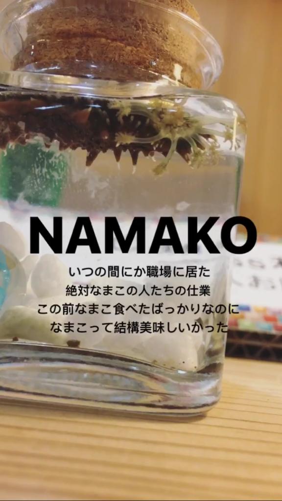 """おながわの""""コト"""" part.1"""
