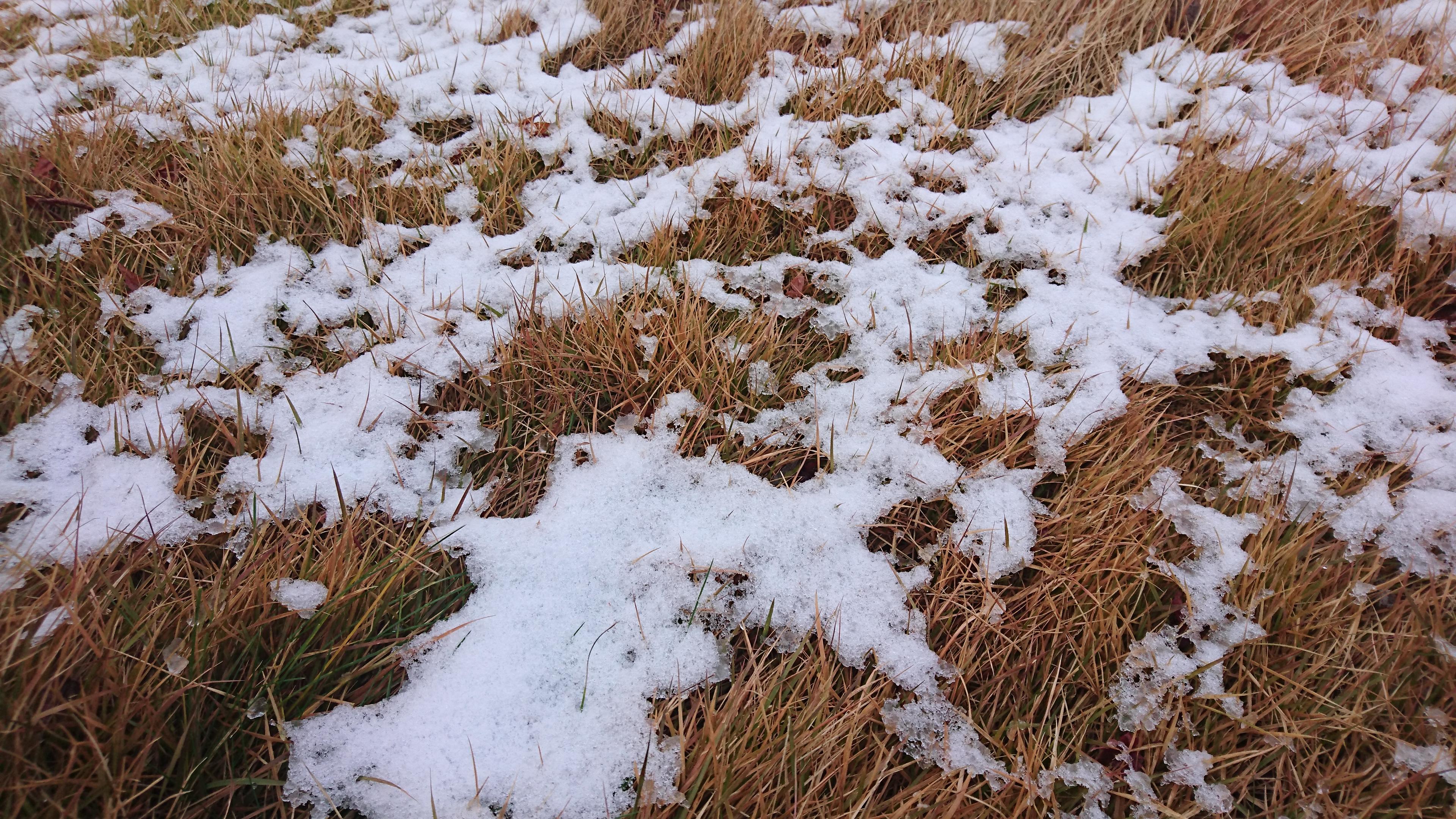 雪だるま♡