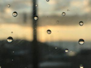 夜に雨が降りました、そしてその朝。