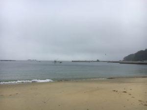 夏浜! 佐藤 美彩喜11 日目