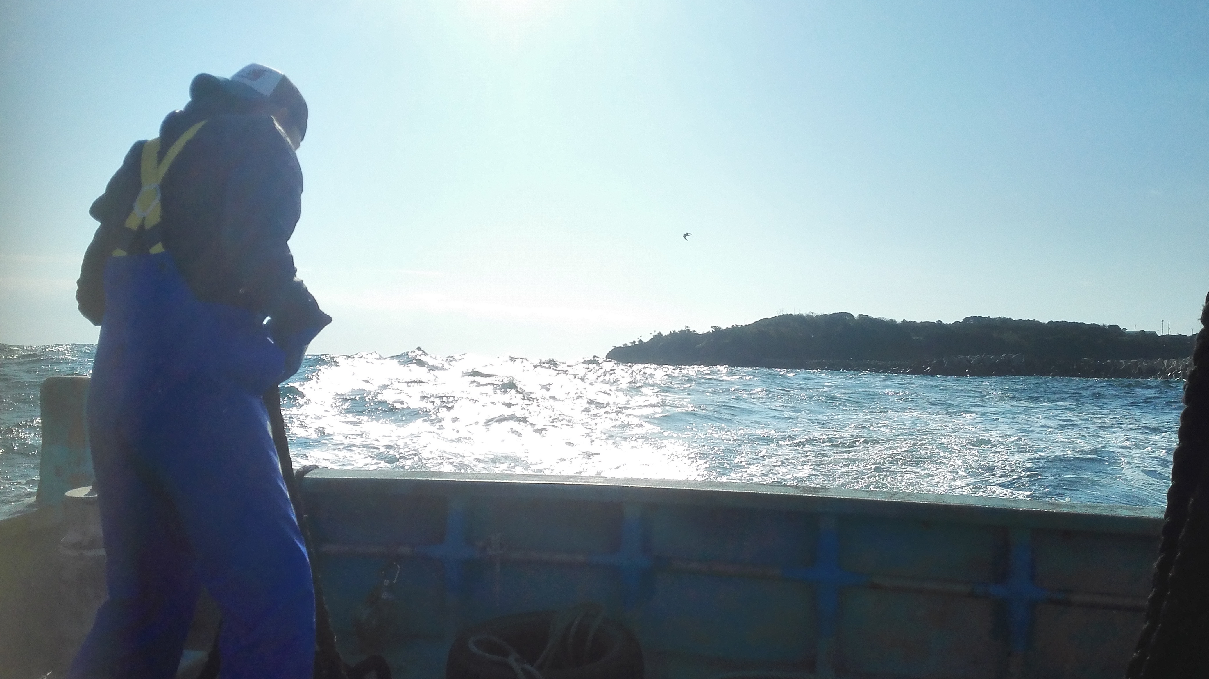 【美しい生活3】離島に行ってみた!!!