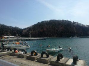 竹浦でダイビング