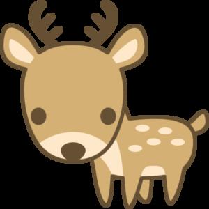 ◆お試し移住3日目◆〜うみねこシーパルちゃんと鹿物語〜